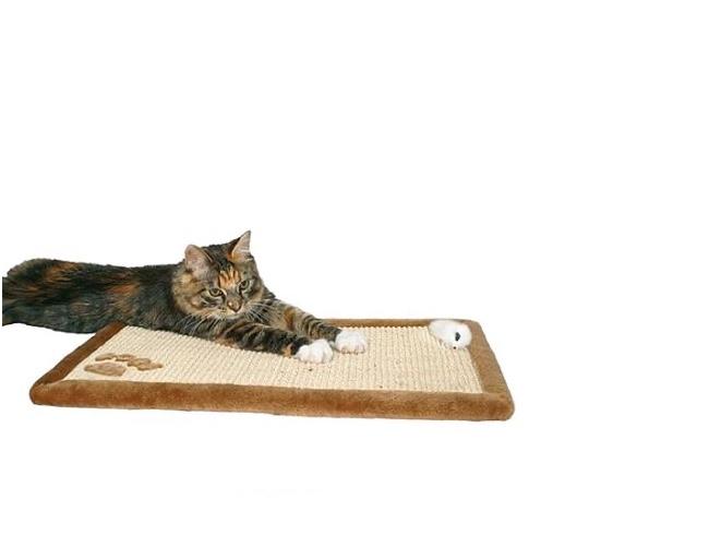 שטיח גירוד – כפות רגליים 55*35