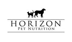 הורייזון HORIZON